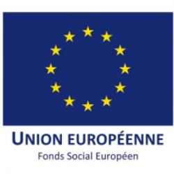 FSE Europe